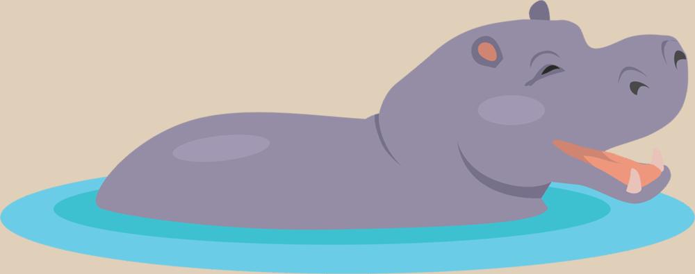 Hippo Graphic
