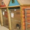 Camp Safari Boarding Kennel