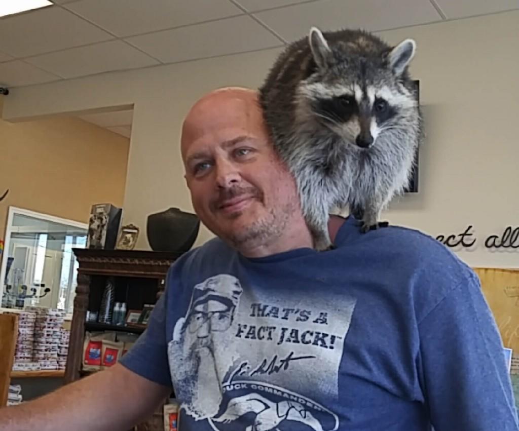 wildlife-pet-animal