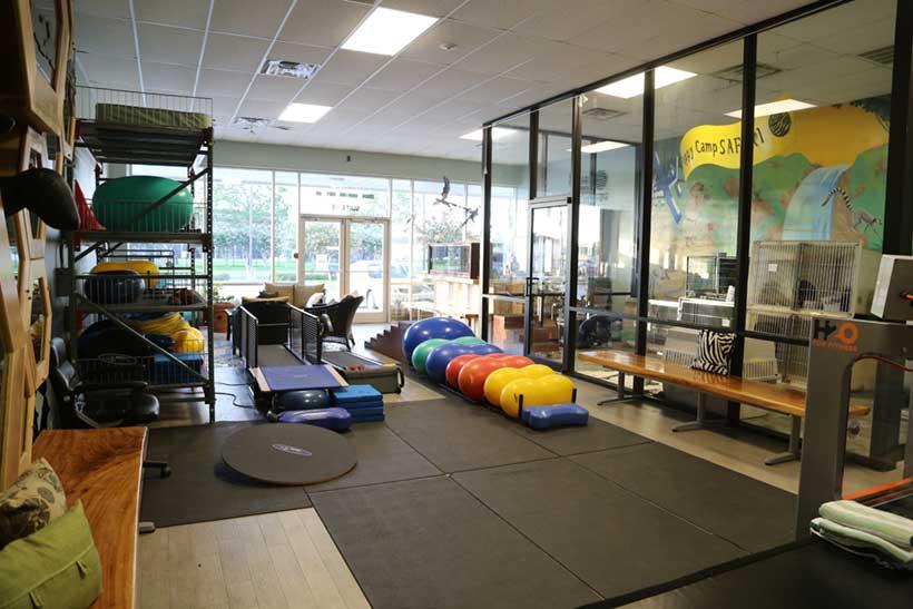 Safari's Rehabilitation Room