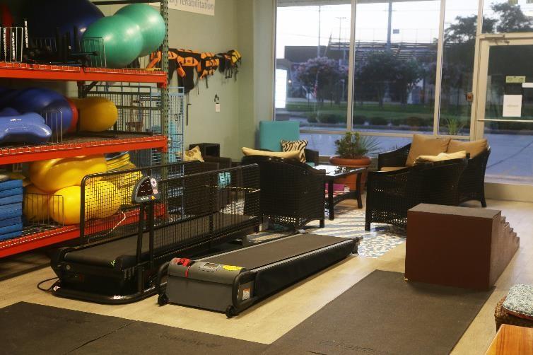 Safari's Rehabilitation Room, Dry Treadmills