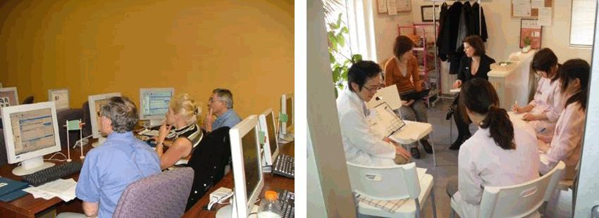 VetPlan training and translators