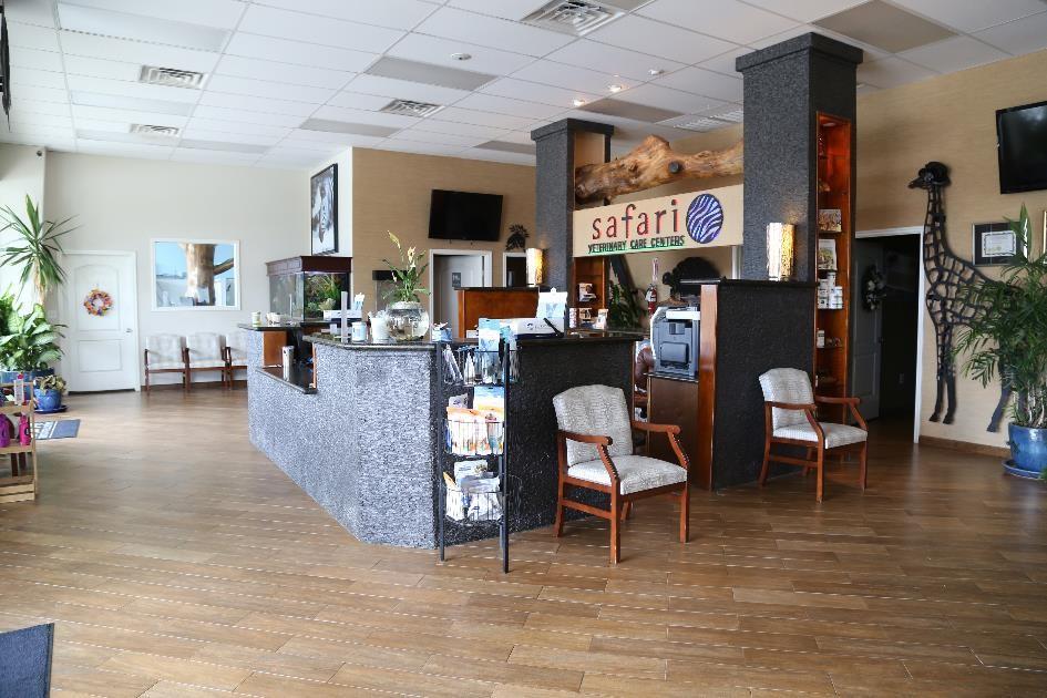 Safari's Reception Area