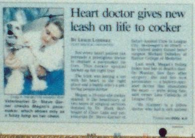 Houston Post article picture of Dr. Garner examining Megan the cocker with the pacemaker