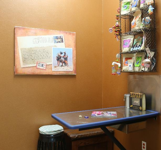 Safari Examination Room