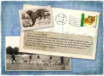 Postcard image artwork