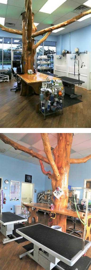Safari's Grooming Facility