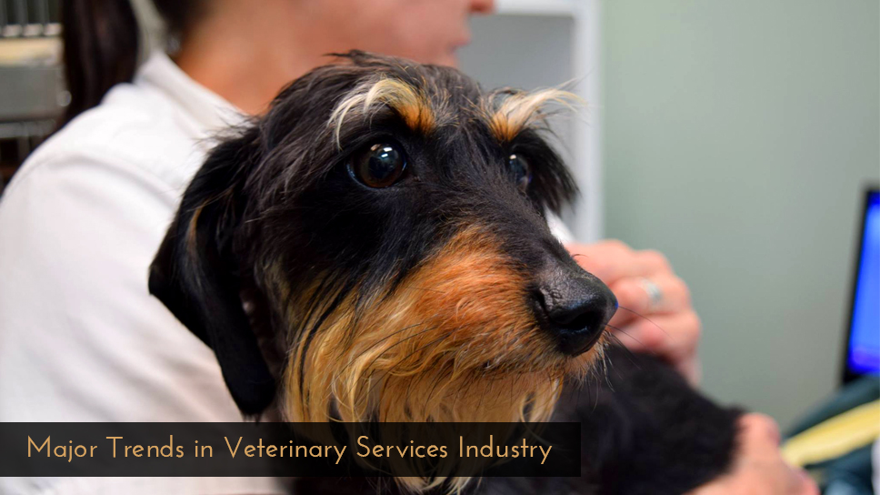 Major-Trends-in-Veterinary-Services-Industry