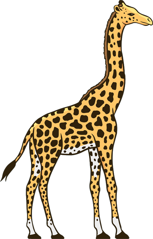 Giraffe Graphic