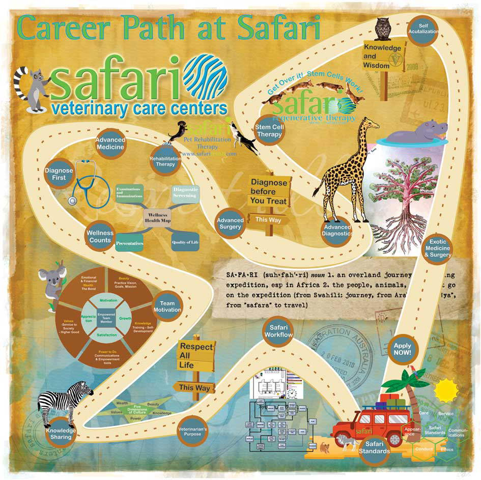 Safari Career Path