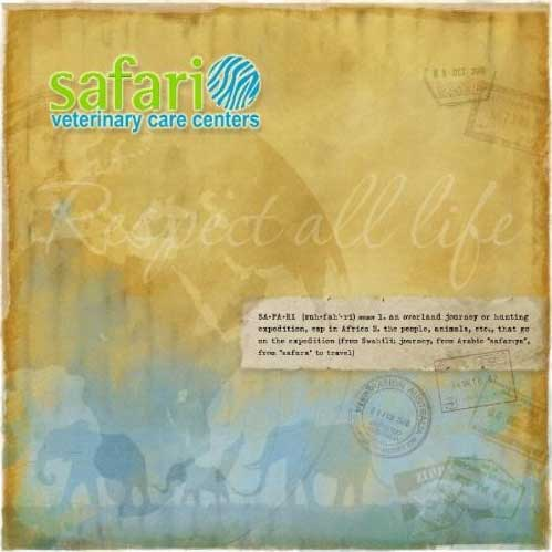 SA-FA-RI (Suh·fah'·ri) meaning