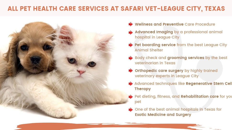 All Pet Health Care Services in one place - Safari Veterinary Care Centers
