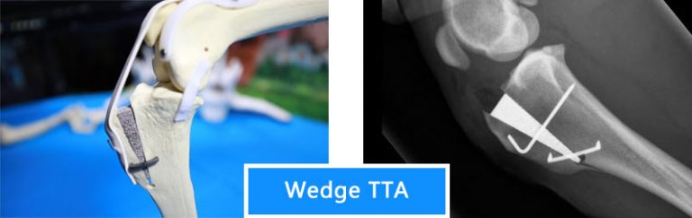Wedge-TTA