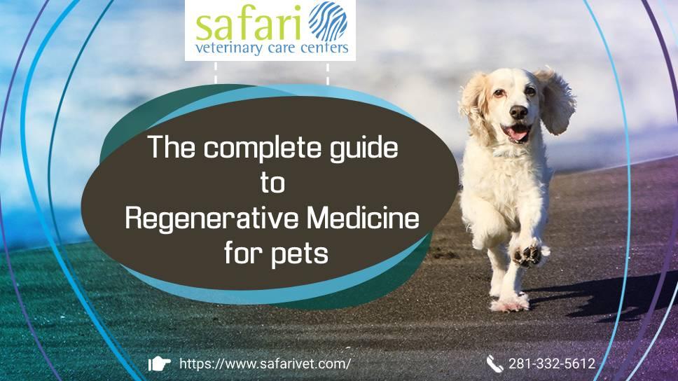 safarivet-the-complete-guide-to-regenerative-medicine-for-pets