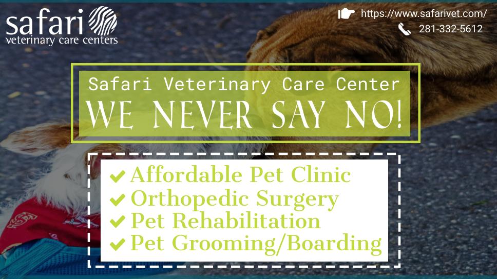 safari-veterinary-care-center-we-never-say-no